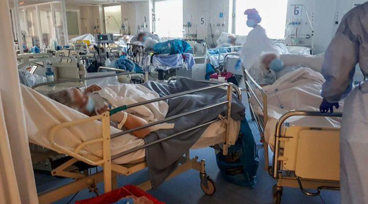 Más de 100 estudios científicos avalan la Ley de Seguridad del Paciente